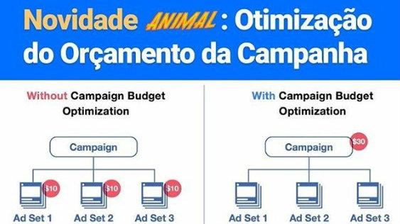 Novidade: Facebook anuncia otimização de orçamento de campanha