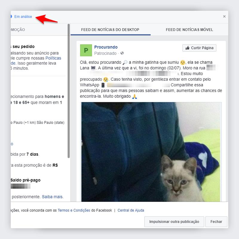 Passo 11 - Impulsionar publicação no Facebook
