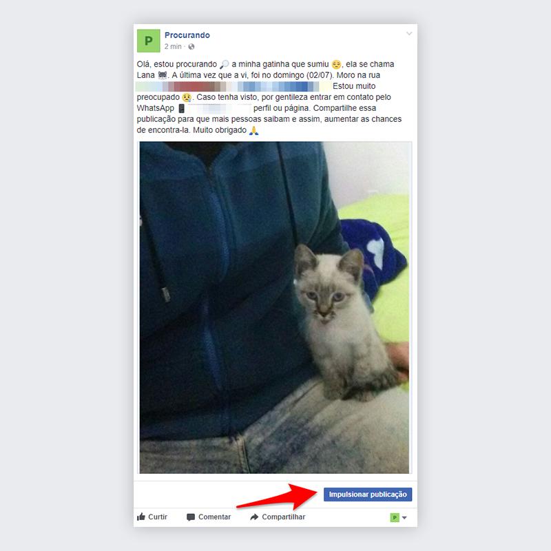 Passo 2 - Impulsionar publicação no Facebook