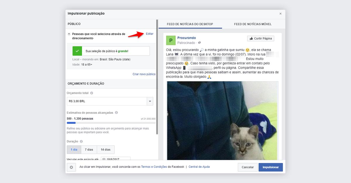 Passo 3 - Impulsionar publicação no Facebook